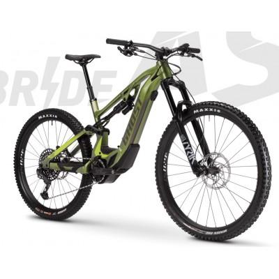 Ghost Hybride ASX Universal 160 olive | warmstone